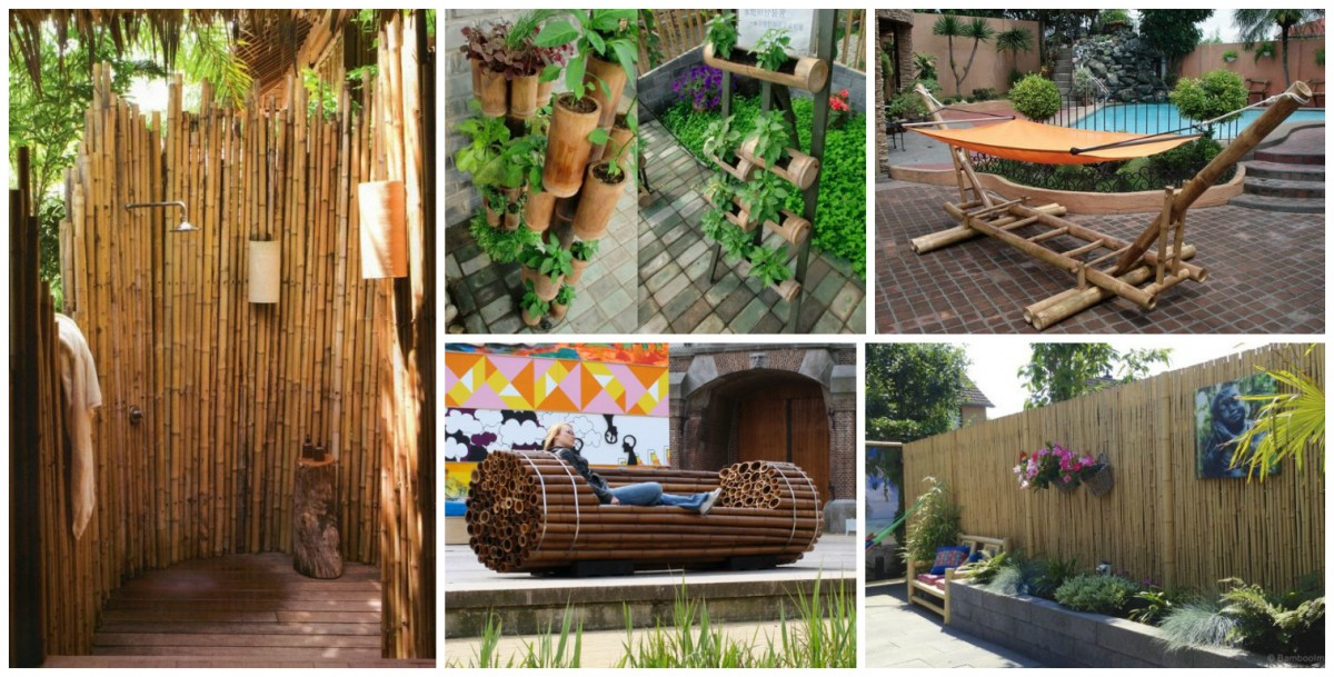 idees-bambou-jardin