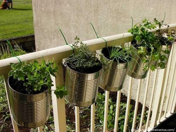 jardiner-sur-ton-balcon-10