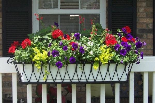 jardiner-sur-ton-balcon-11