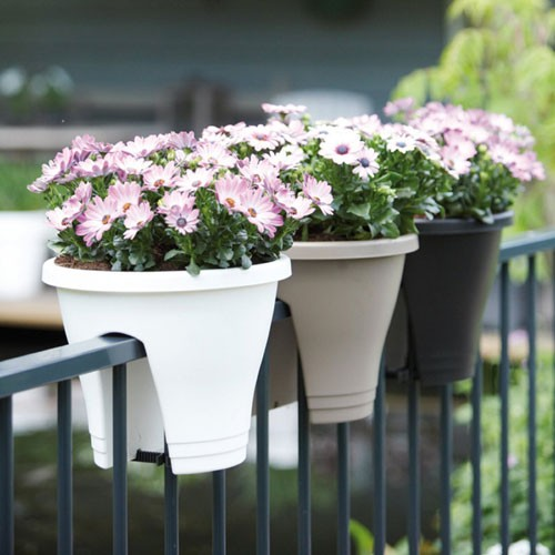 jardiner-sur-ton-balcon-14