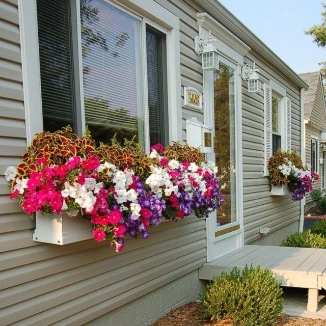 15+ Magnifiques Boîtes de Fleurs de Balcon
