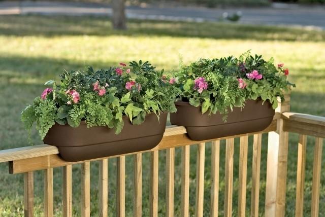 jardiner-sur-ton-balcon-9