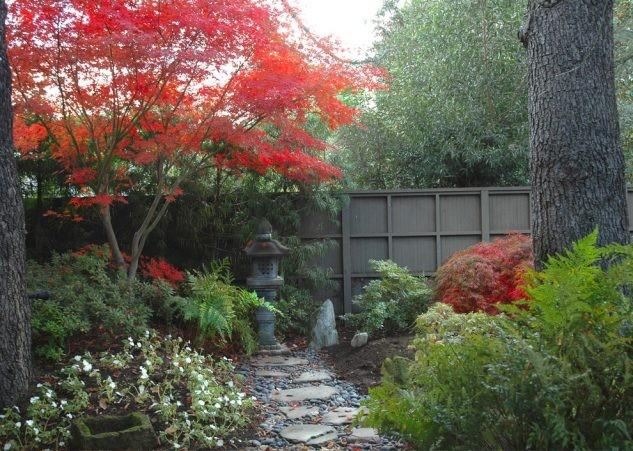 15+ Idées Créatives pour un Jardin Japonais Absolument Époustouflant