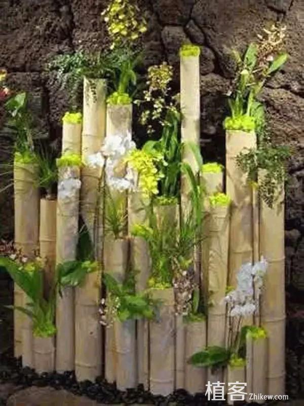 bambou-decor-2
