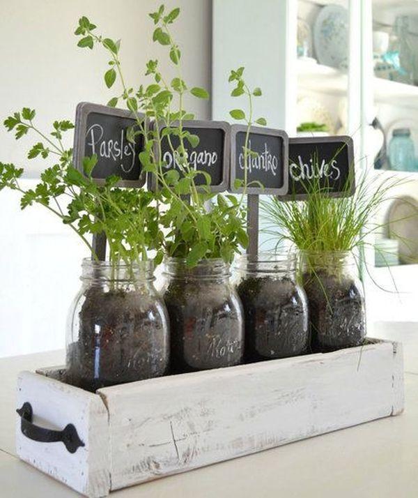 herbes-aromatiques-1