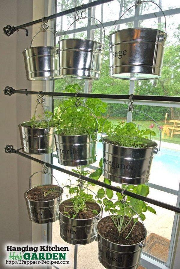herbes-aromatiques-12
