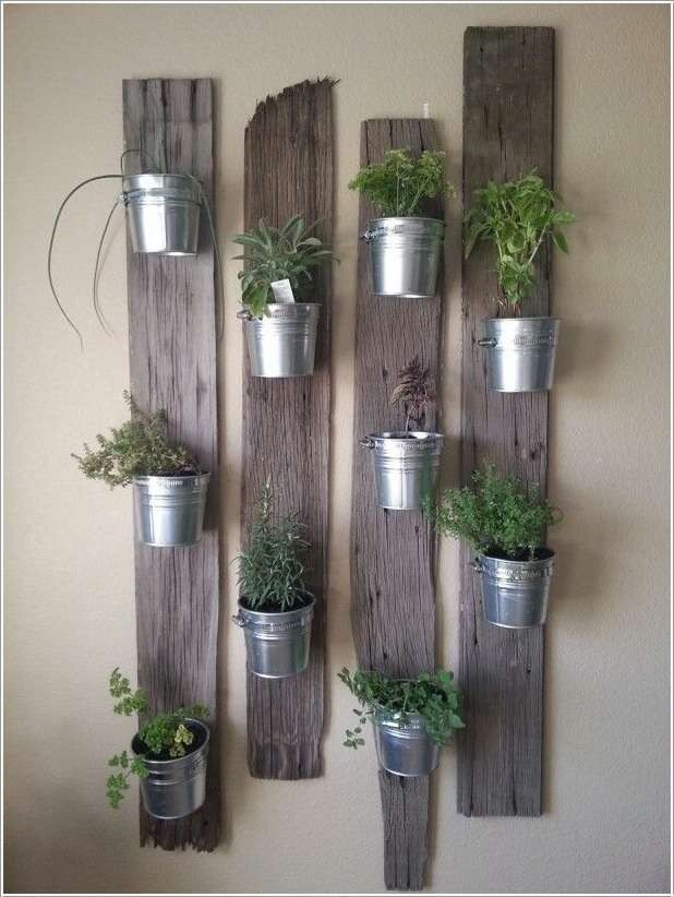 herbes-aromatiques-16