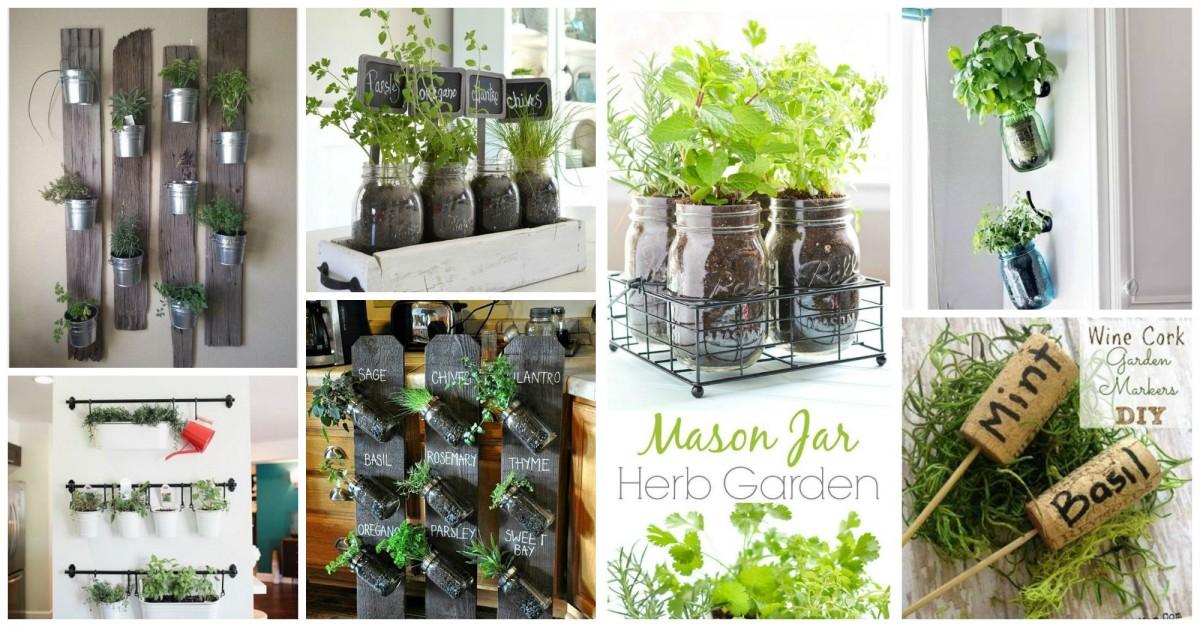 palette plante aromatique elegant plantes aromatiques diy fabriquez un potager rcupu suspendu. Black Bedroom Furniture Sets. Home Design Ideas
