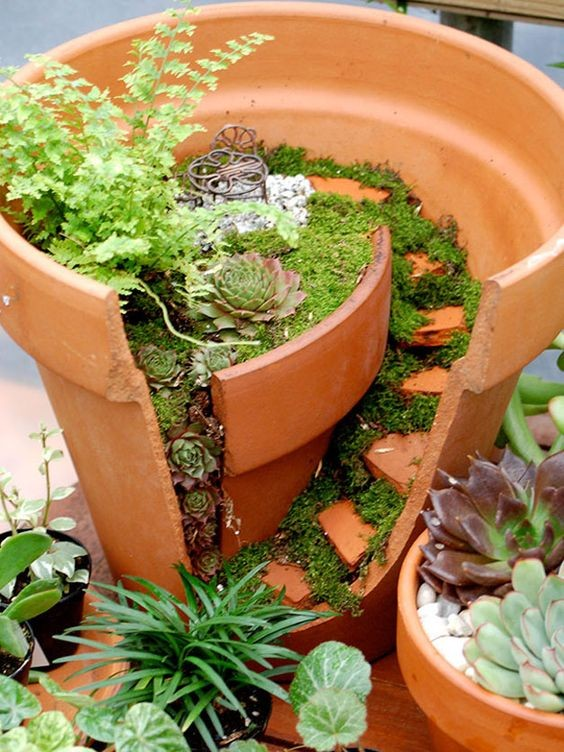 jardin-feerique-5