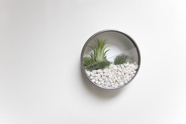 decorer-avec-terrarium-11