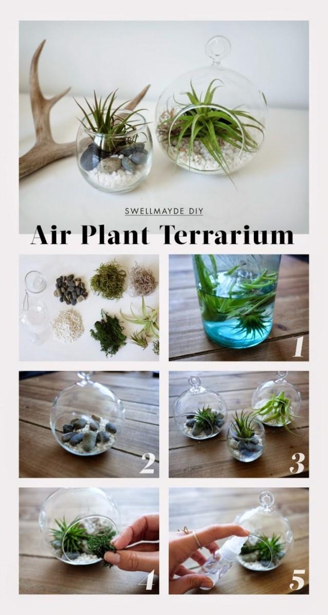 decorer-avec-terrarium-20