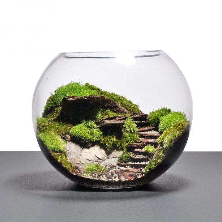 decorer-avec-terrarium-6
