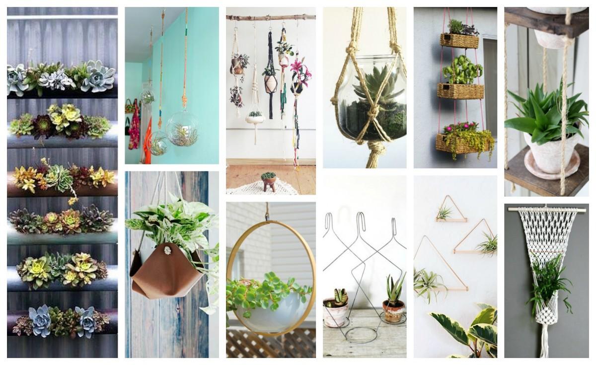 idees-plantes-suspendus