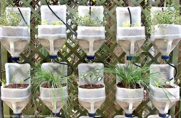 jardinieres-bouteilles-recyclees-7
