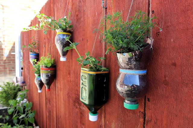 jardinieres-bouteilles-recyclees
