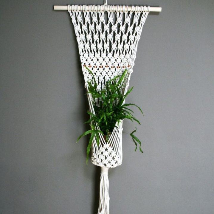 plantes-suspendus-10