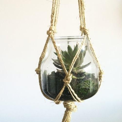 plantes-suspendus-11