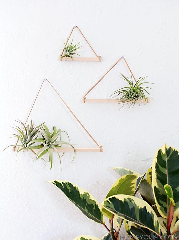 plantes-suspendus-13