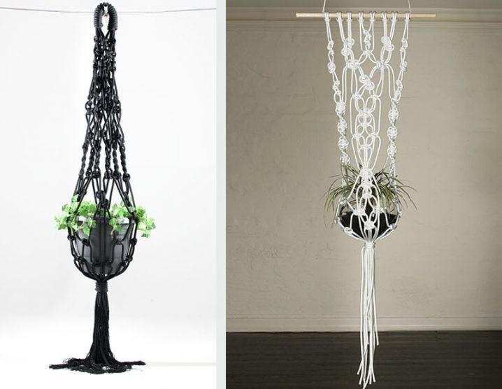 plantes-suspendus-14