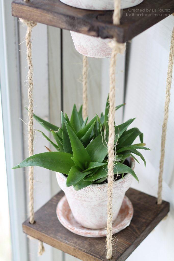 plantes-suspendus-15