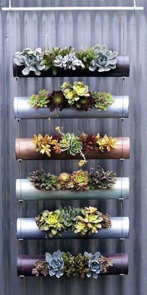 plantes-suspendus-2