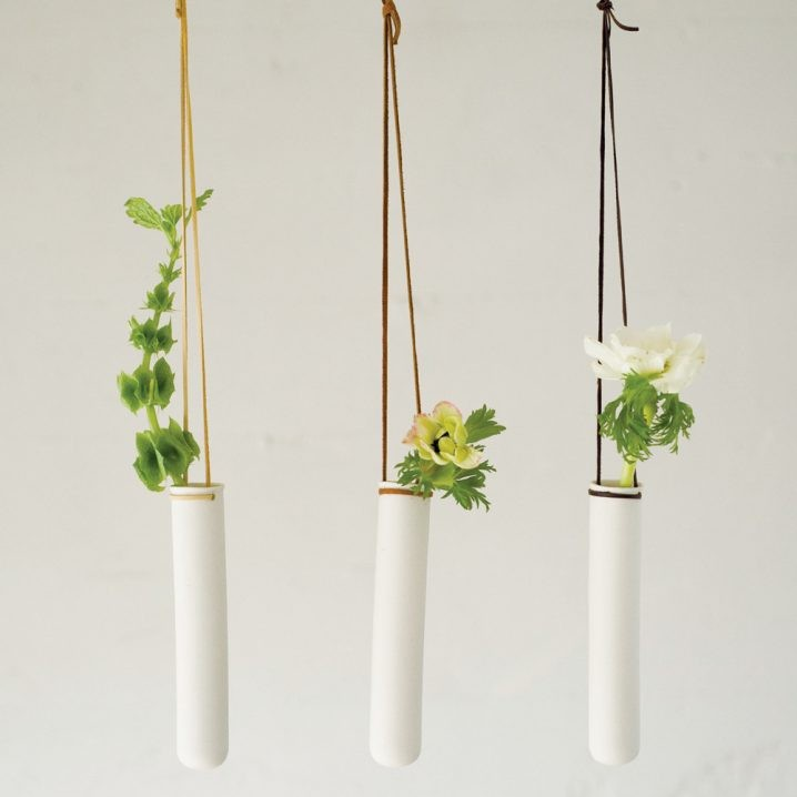plantes-suspendus-3