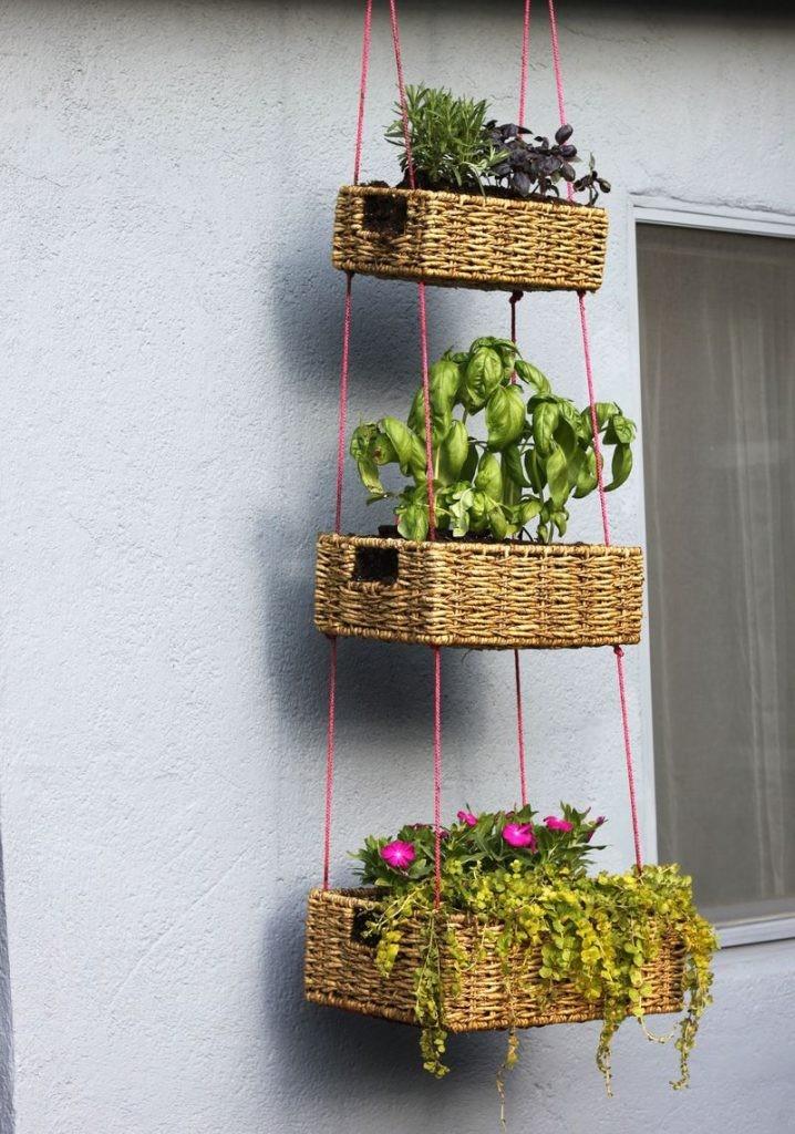 plantes-suspendus-4