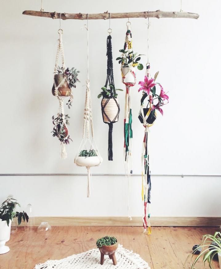plantes-suspendus-7