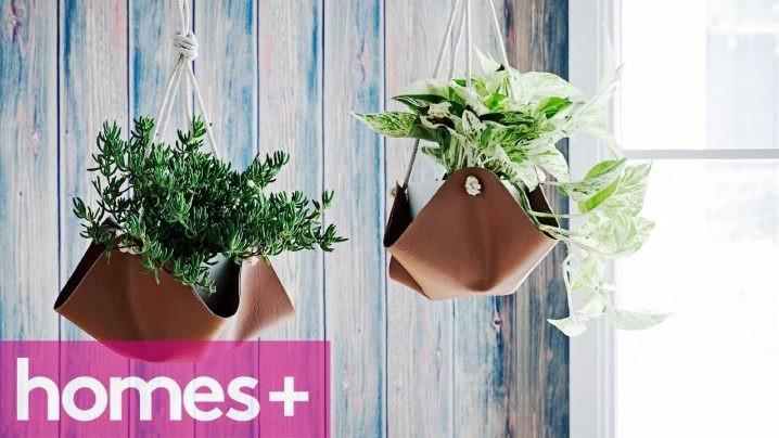 plantes-suspendus-9
