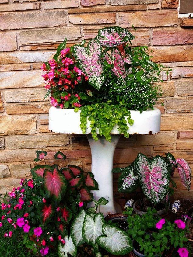 jardinieres-pour-les-patios-16