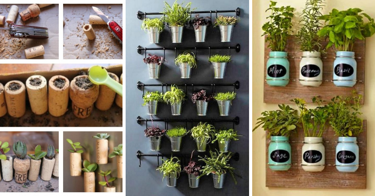 idees-decoration-vegetale